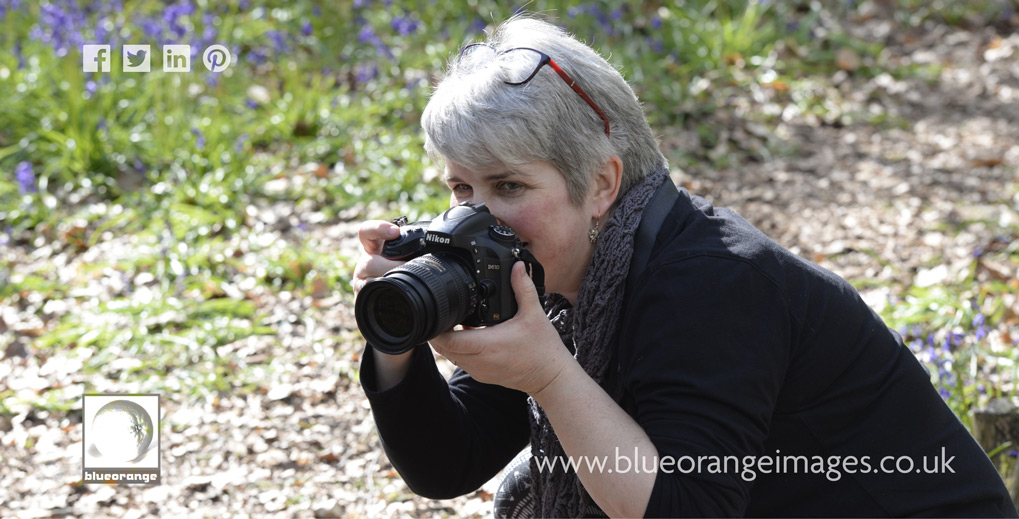 Blue Orange Images - Edna photographing in Whippendell Woods 4470