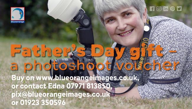 family portraits for Father's Day – Blue Orange Images